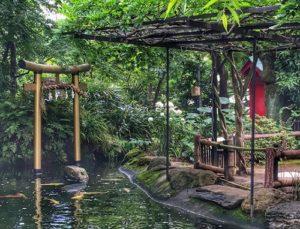 300x229 - 愛宕神社の池