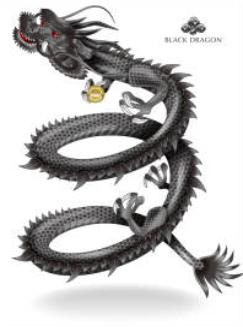 2020 03 31 10h42 45 - 龍神の種類は何種類あるの?色の違いは?爪の数に意味はあるの?