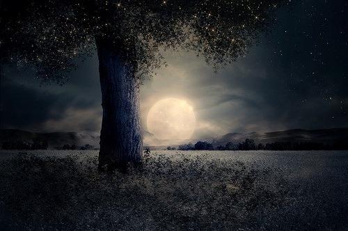 s night 2539411 640 - 満月の名前は月ごとに違う!満月の日は金運が上がるって本当なの?