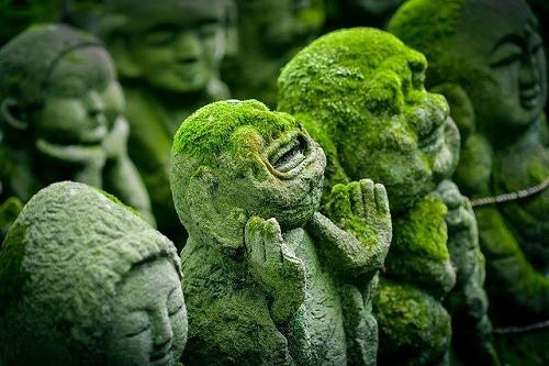s kyoto 1976538 640 - 産土神社で開運起業!あなたの産土神社を調べる方法とは?