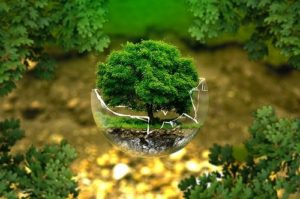s environmental protection 326923 640 300x199 - s-environmental-protection-326923_640
