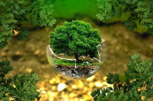 s environmental protection 326923 640 - ツレがうつになりまして。【細川貂々】の感想と起業へのヒントとは?